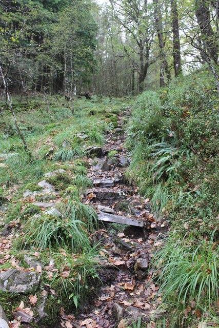 Steep Slippery Path through Coed Cymerau