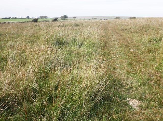 The Tarka trail crosses Bill Hill