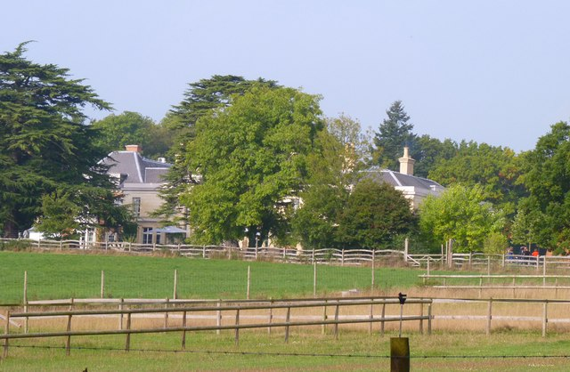 New Forest View with Lime Wood Hotel