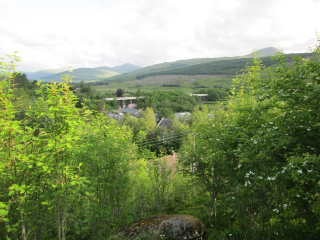 Glimpse of Crianlarich from the nature reserve