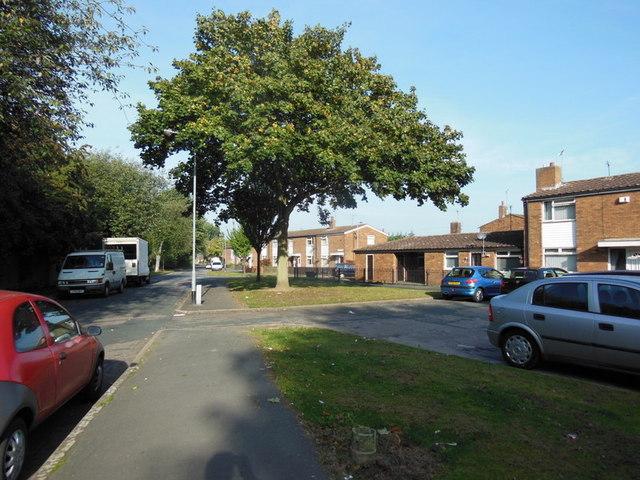 Clapham Avenue, Hull