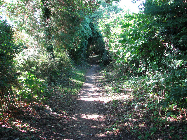 Footpath to Star House