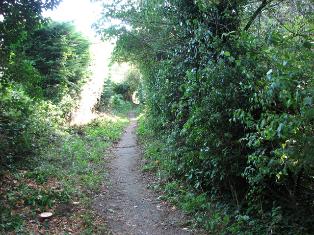 Path from St Mary's church to Star House