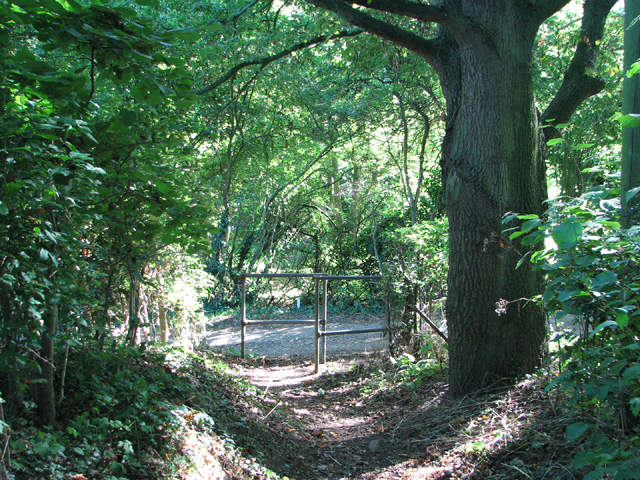 Footpath meets farm track