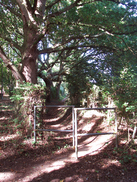 Path from Star House to Rockland St Mary
