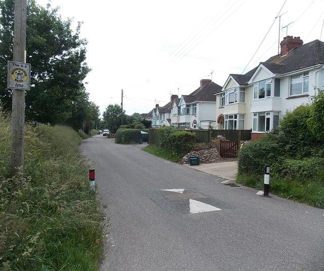 Byes Lane houses, Sidford