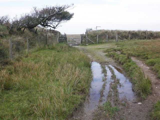 Woodbarrow Gate