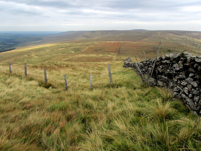 Wall and Fence on Little Whernside