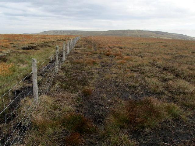 Ridge between Little Whernside and Dead Man's Hill