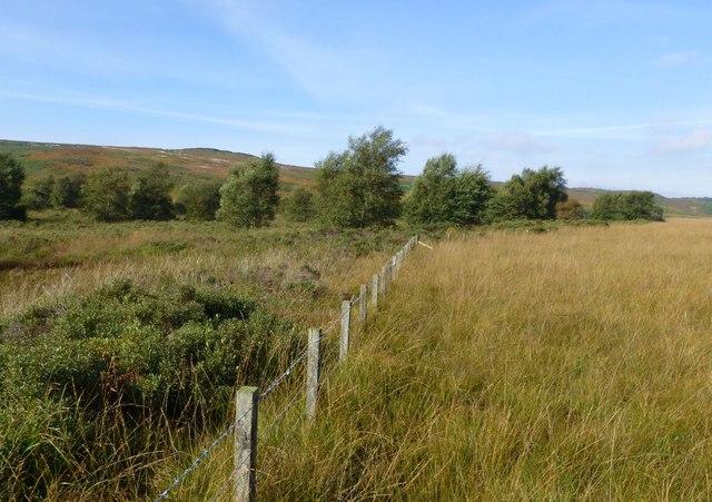 Parish boundary fence
