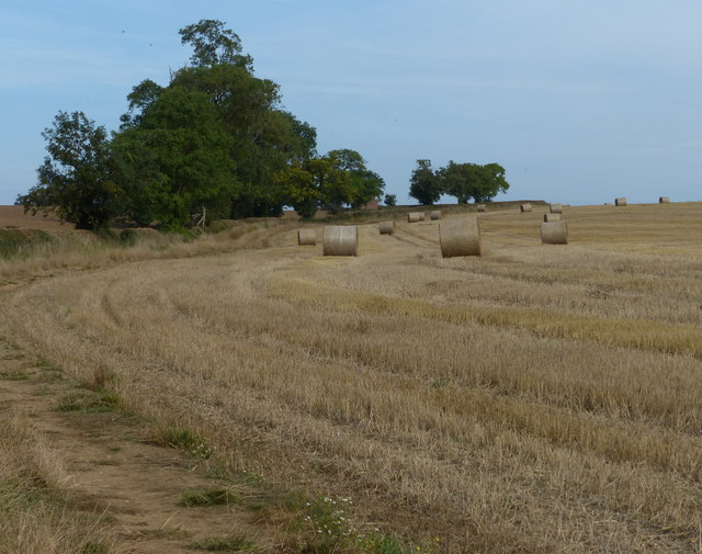 Straw bales near Folly Bridge