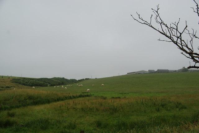 Fields below Wideford Farm