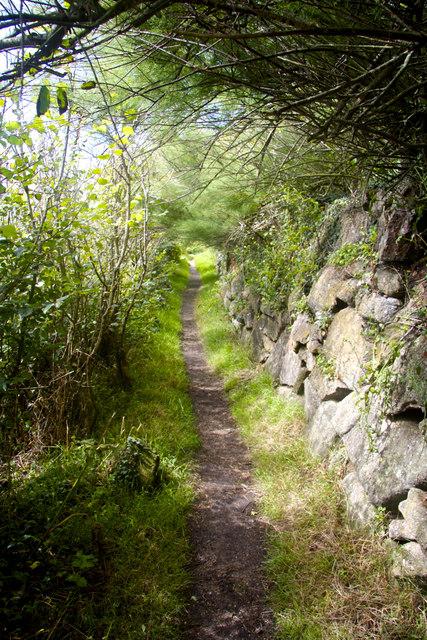Coastal Path near St Loy's Cove