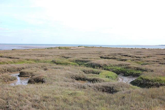 Shinglehead Point