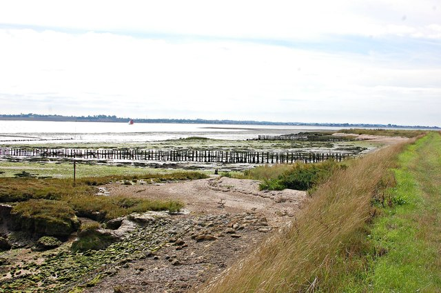 Remnants of salt marsh on the Blackwater estuary