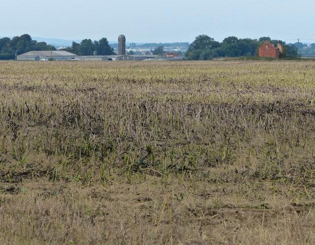 View north towards Foston Hall Farm
