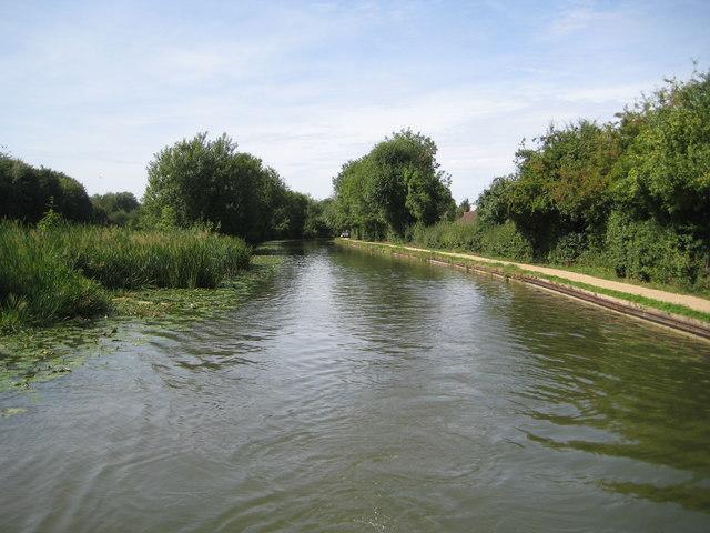 Grand Union Canal: Reach in Giffard Park
