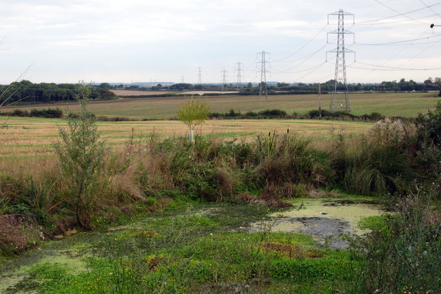 Pond and pylons by Turvey Road