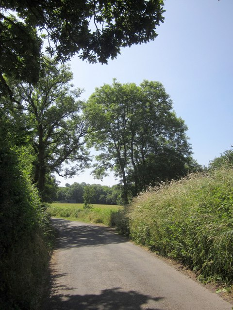 Lane to Drayford