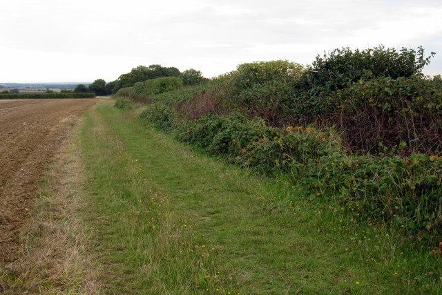 Bridleway to Ramacre Wood