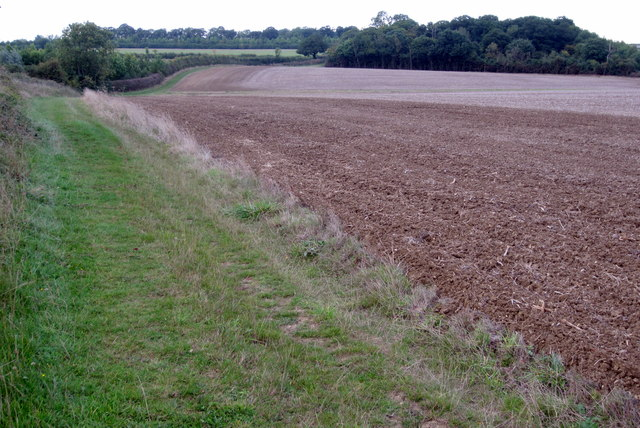 Bridleway to Turvey by Horseclose Spinney