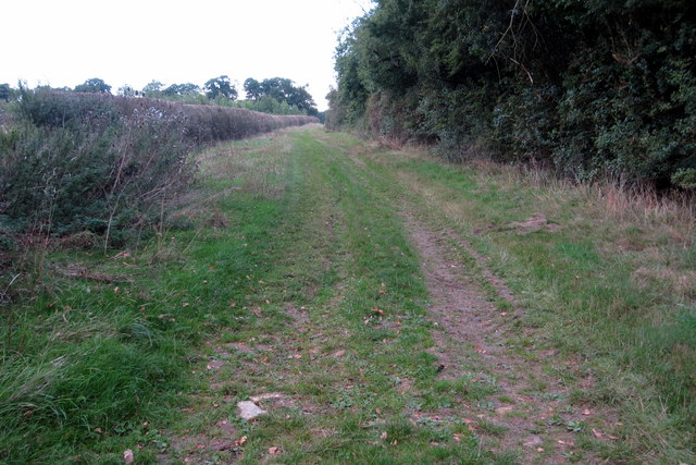 Bridleway towards Turvey by Horseclose Spinney