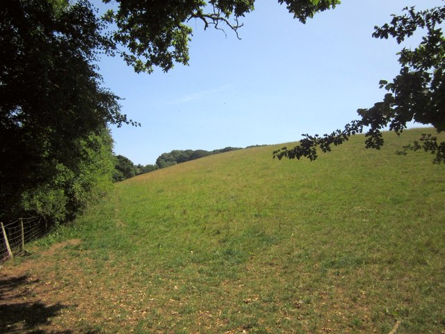 Hillside above Little Dart