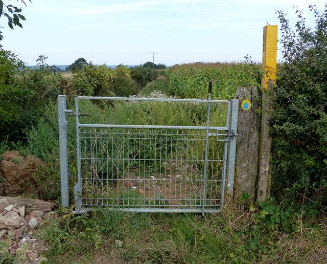 Gate along the bridleway