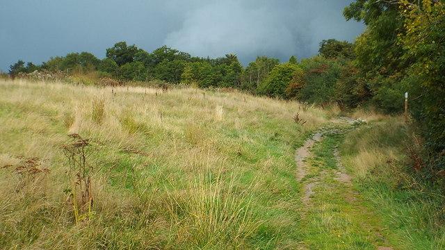Footpath at Batchworth Heath