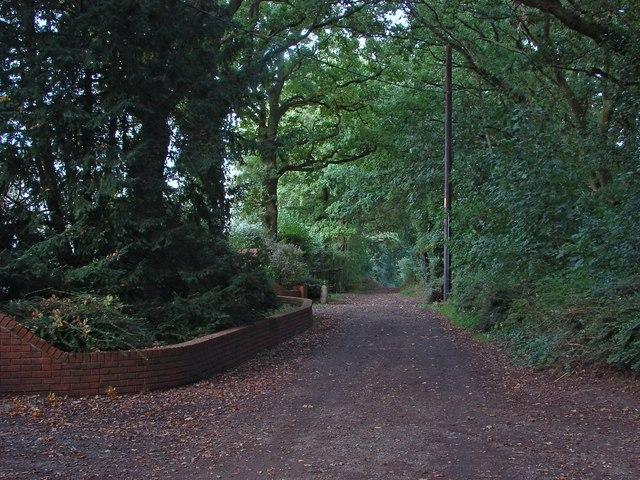 Green Lane, Binfield