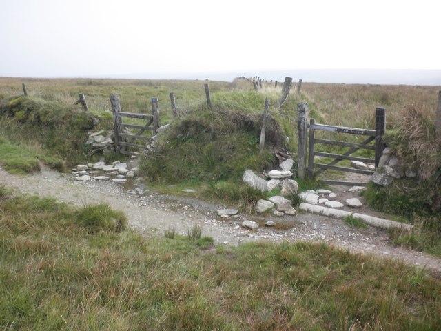 Choice of gates on Pinkworthy