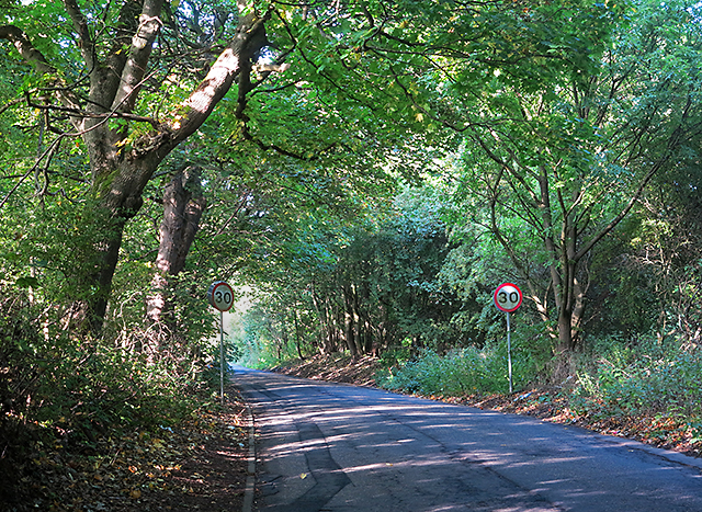 Minor road near Dalmeny