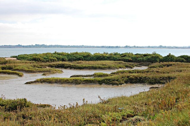 Salt marsh near Thirslet Creek