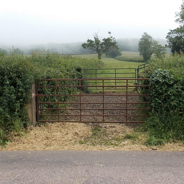Two gates at a field entrance north of Sidmouth
