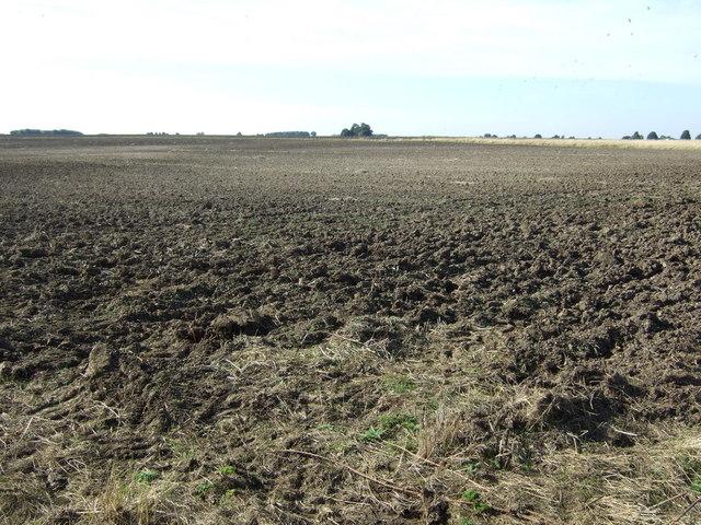 Farmland near Ludford