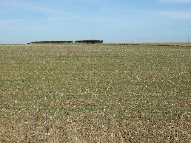 Farmland north of the A631