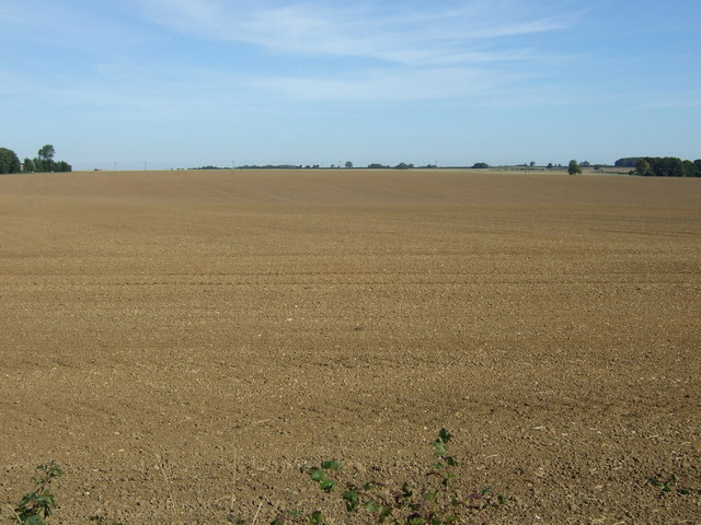 Wolds farmland