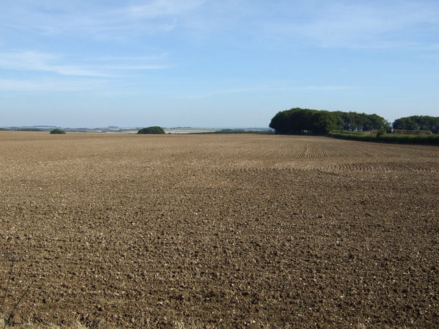 Farmland towards New Buildings