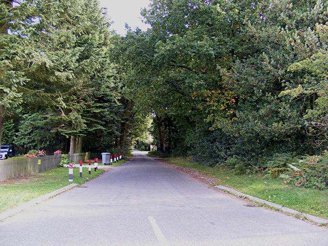 The Heath, Buxton Heath