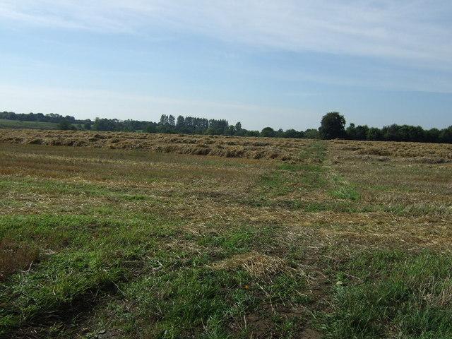 Farmland, Asterby