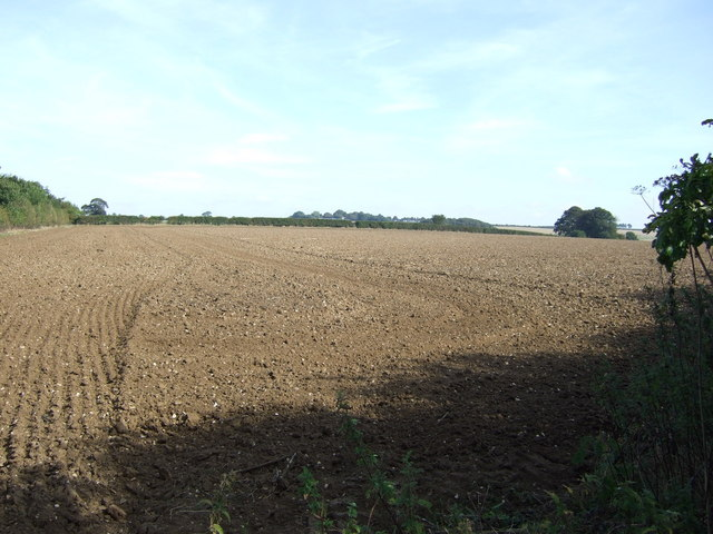 Farmland near Asterby Grange