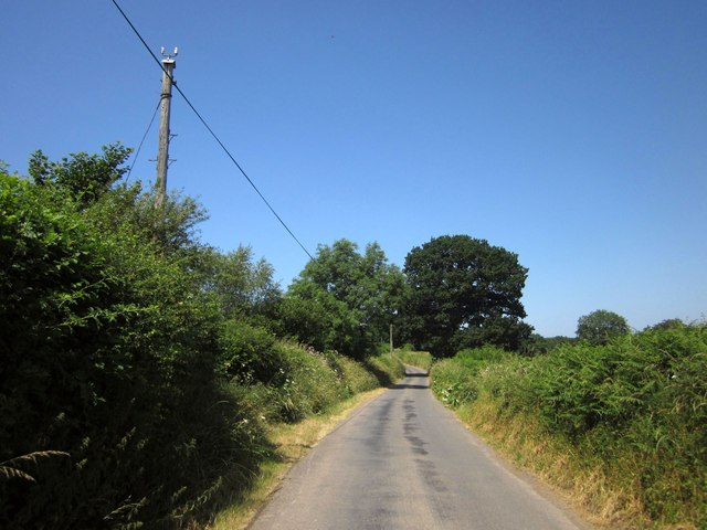 Lane north of Drayford