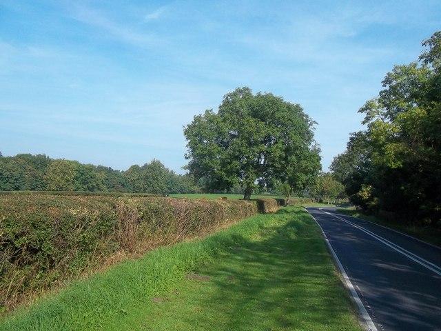The B5035 Road near Offcote Cottage Farm