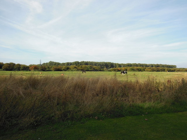 Spare land next to Bude Park, Hull