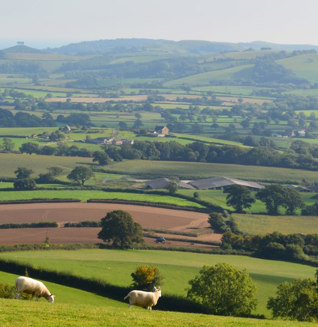 The Vale of Marshwood, Pilsdon, Dorset