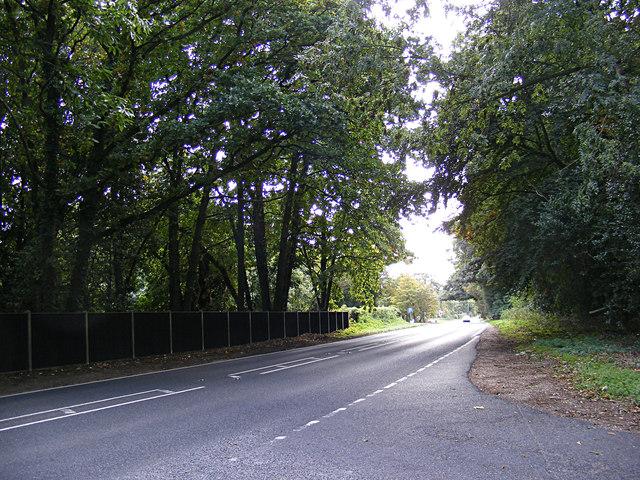 A140 Cromer Road, Hevingham