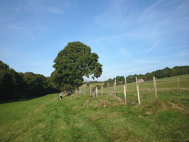 The bridleway south of Low Waterside