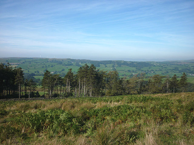 Frith Plantation