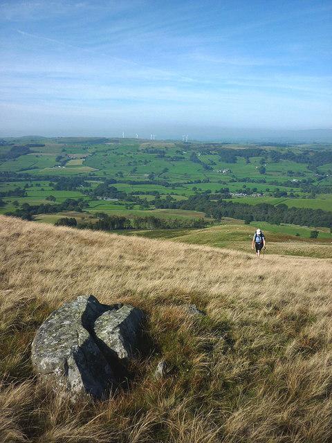 Cartsaddle Hill, Middleton Fell