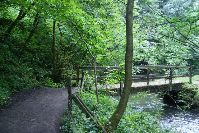 Footbridge in Beresford Dale
